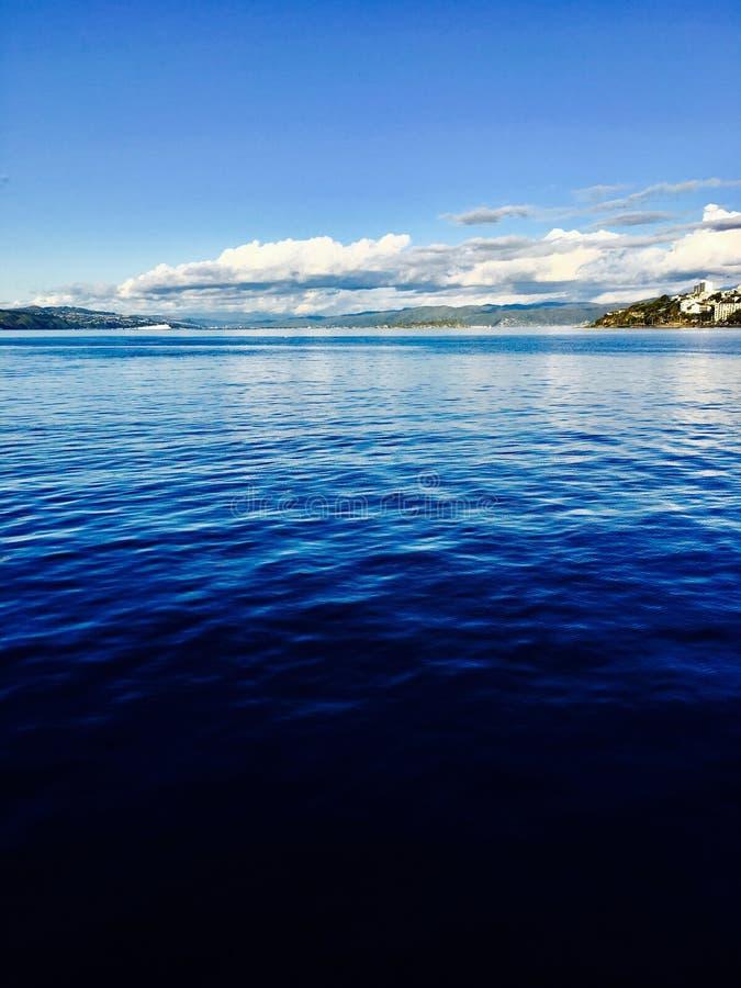 Sikt av Wellington Harbor arkivbild