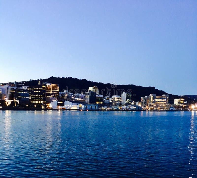Sikt av Wellington Harbor royaltyfria foton