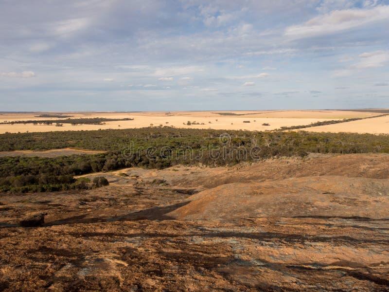 Sikt av Wheatbelten, nära Hyden, västra Australien fotografering för bildbyråer