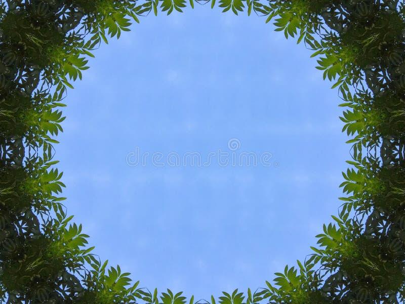 Sikt för blå himmel för illustration från djungelträdtunnelen royaltyfri illustrationer