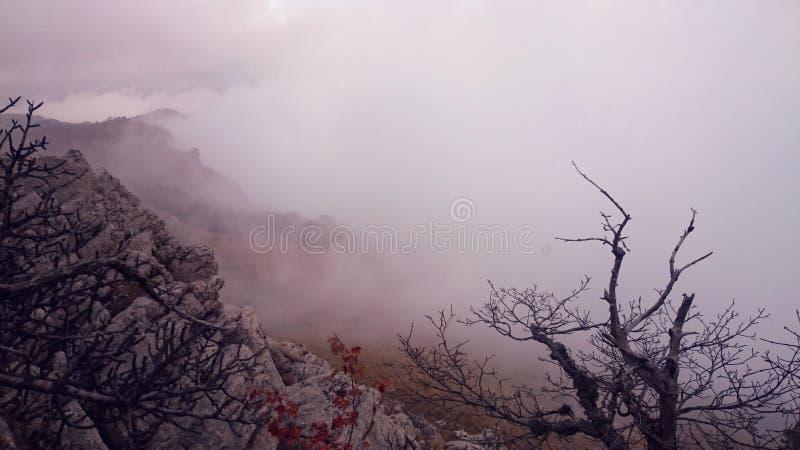 Sikt för dimmigt berg Ai Petry arkivfoto
