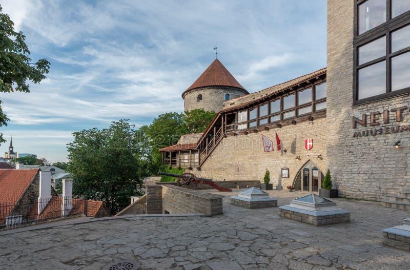 Sikt för Estland Tallinn gammal stadotta royaltyfria foton
