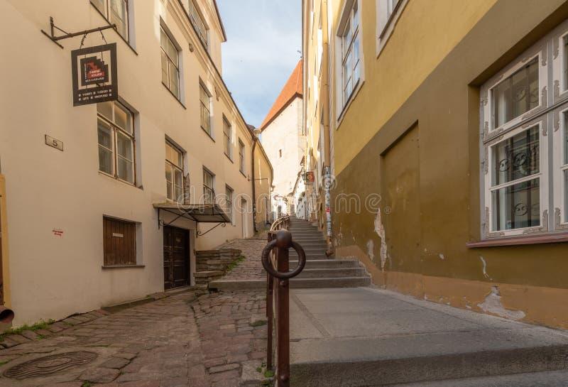 Sikt för Estland Tallinn gammal stadotta royaltyfria bilder