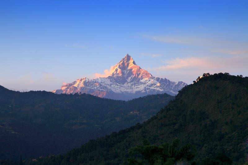 Sikt för fisksvansberg i Annapurna fotografering för bildbyråer