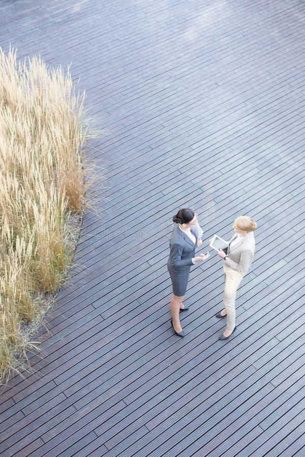 Sikt för hög vinkel av affärskvinnor som diskuterar på golvtilja arkivbild