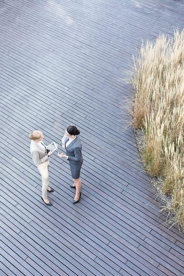 Sikt för hög vinkel av affärskvinnor som diskuterar på golvtilja royaltyfri bild