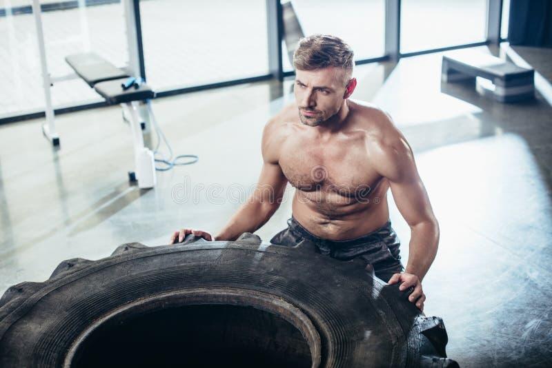 sikt för hög vinkel av lyftande gummihjulet för stilig shirtless idrottsman royaltyfri bild