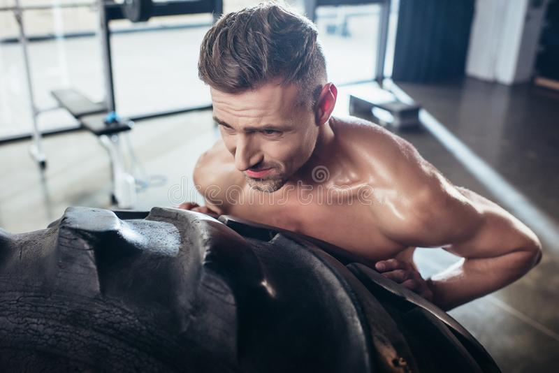 sikt för hög vinkel av lyftande gummihjulet för stilig svettig shirtless idrottsman royaltyfri bild