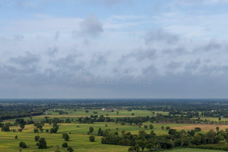 Sikt för hög vinkel av skogen och risfält royaltyfria bilder