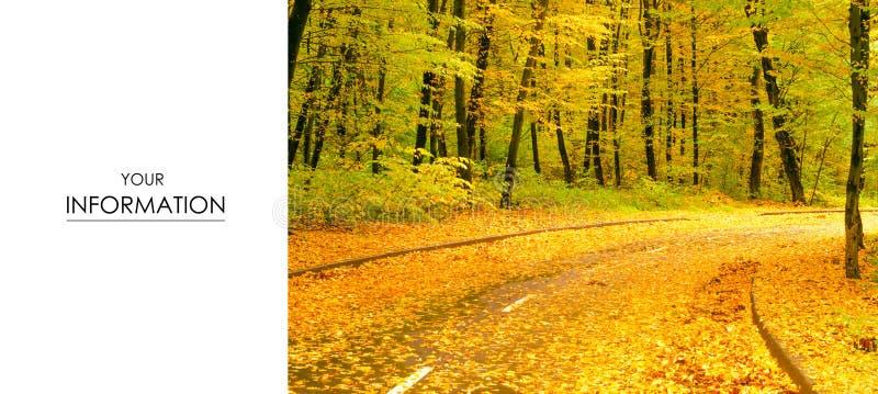 Sikt för landskap för höstträdväg av gula röda apelsinsidor royaltyfri fotografi