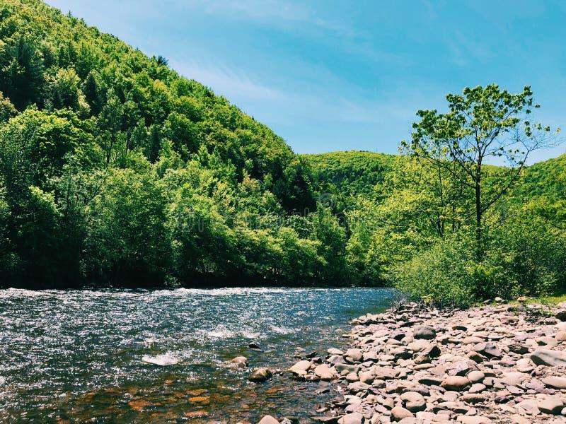 Sikt för sommar för Lehigh flod härlig royaltyfria foton