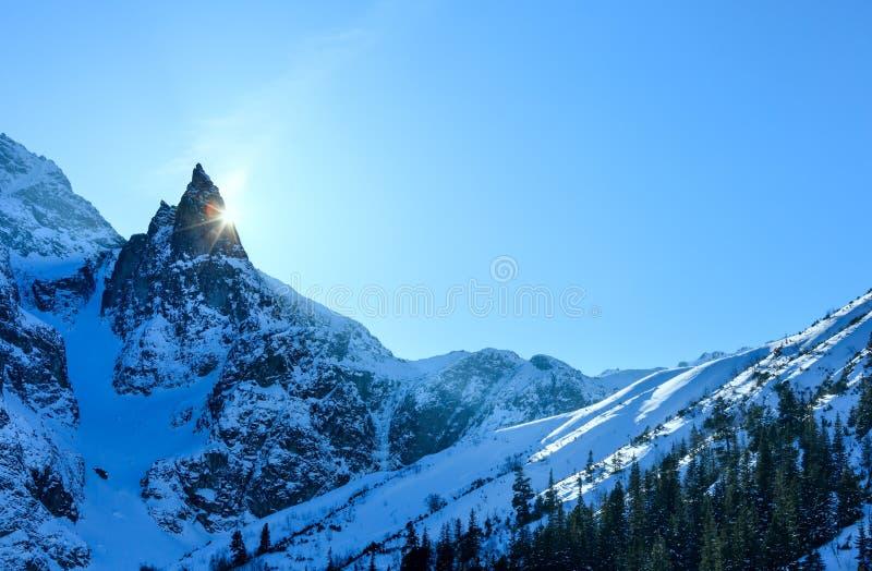 Sikt för stenigt berg för vinter fotografering för bildbyråer