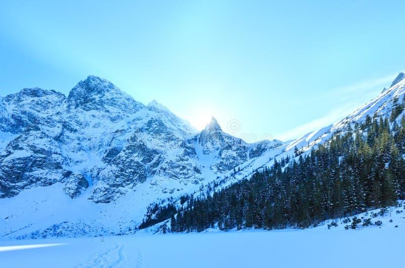 Sikt för stenigt berg för vinter royaltyfria foton