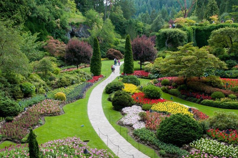 sikt för trädgårds- trädgårdar för butchart sjunken arkivfoto