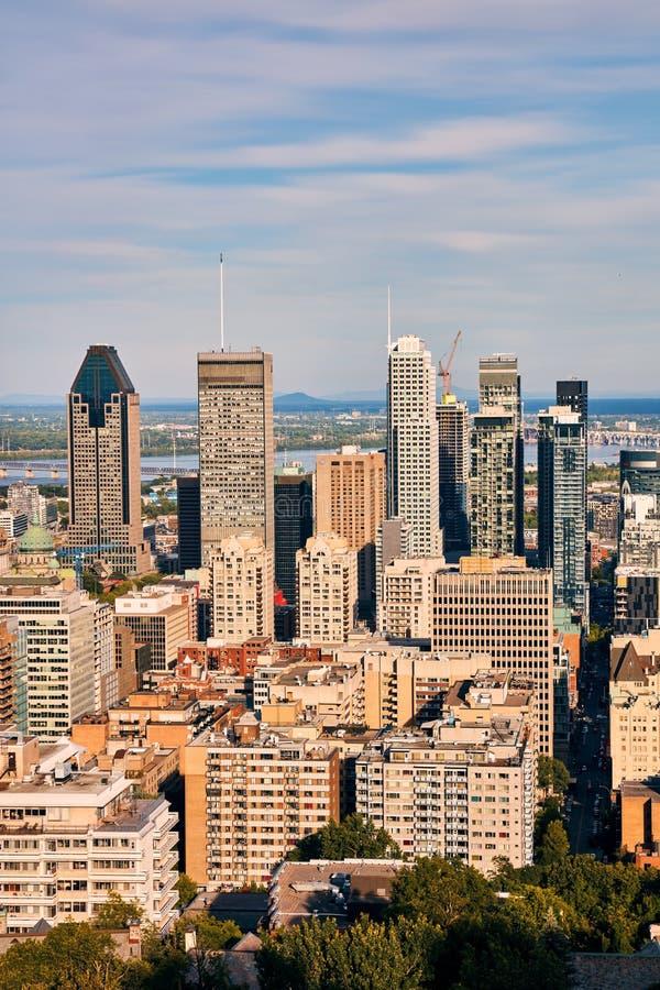 Sikt f?r Montreal stadshorisont fr?n monteringskunglig person p? en solig sommareftermiddag i Quebec, Kanada royaltyfria bilder