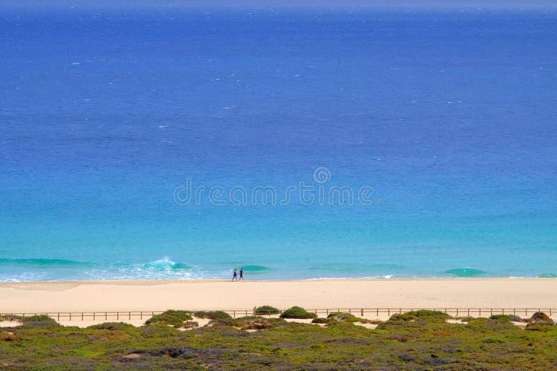 Sikt från över på stranden med guld- sand och havet i Morro Jable, Fuerteventura royaltyfri bild