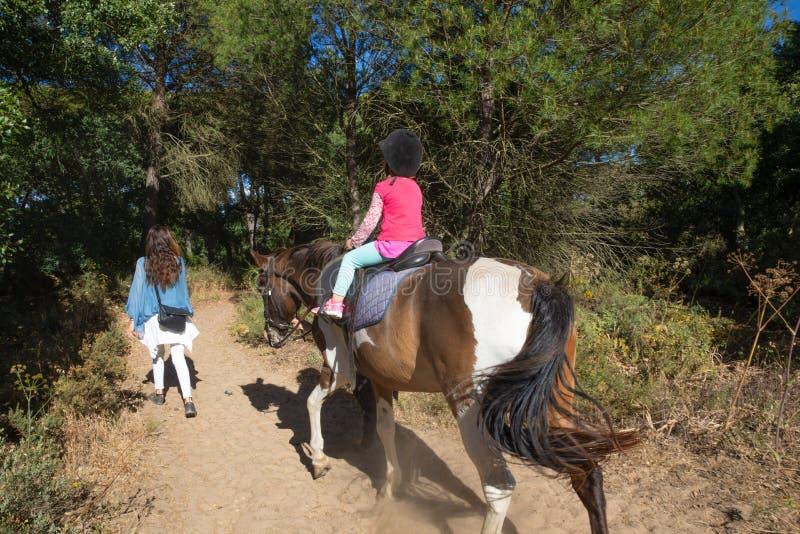 Sikt från baksida av det lilla barnet som rider en häst bredvid hennes moder i en skog arkivfoton