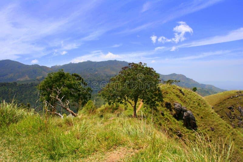 Sikt från bergstoppet av den lilla Adam'sens maximum, Ella, Sri Lanka arkivfoto