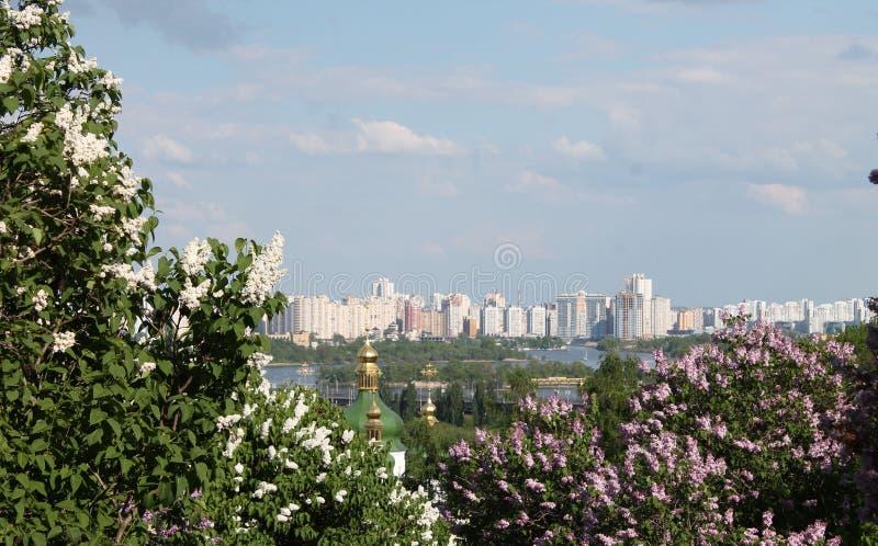 Sikt från botaniska trädgården till Kiev arkivbild