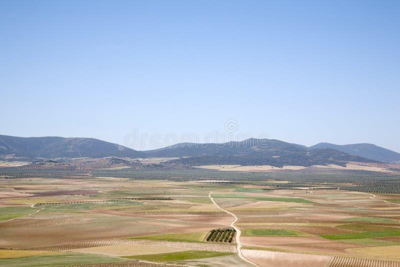 Sikt från Consuegra; Toledo, fotografering för bildbyråer
