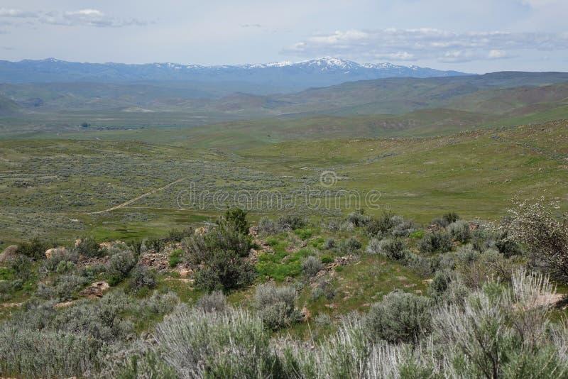Sikt från Crane Creek, Idaho royaltyfri bild