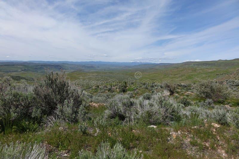 Sikt från Crane Creek, Idaho royaltyfri fotografi