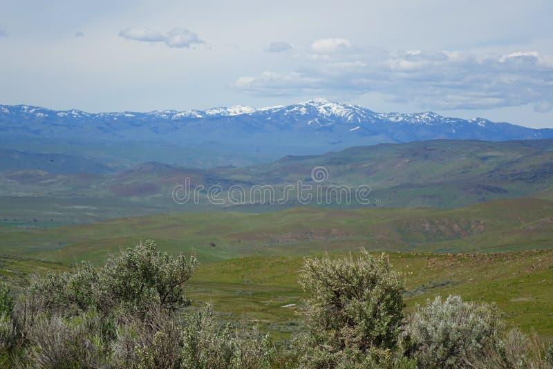Sikt från Crane Creek, Idaho royaltyfri foto