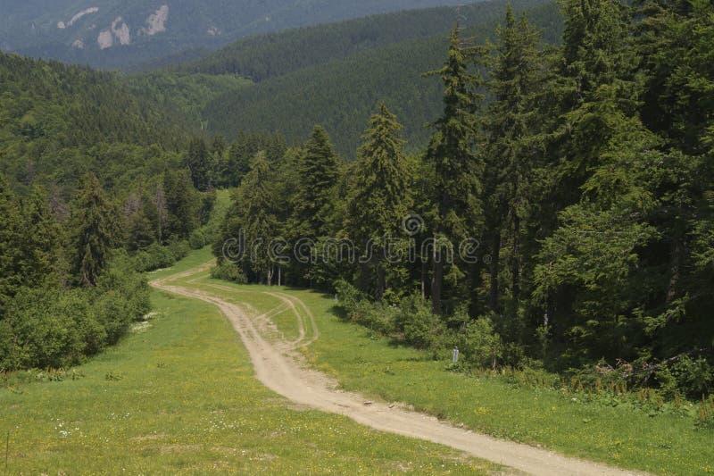 Sikt från de Baiului bergen, Rumänien fotografering för bildbyråer