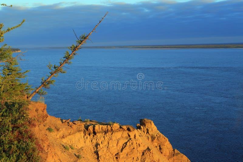 Sikt från den höga banken av floden Lena arkivfoto