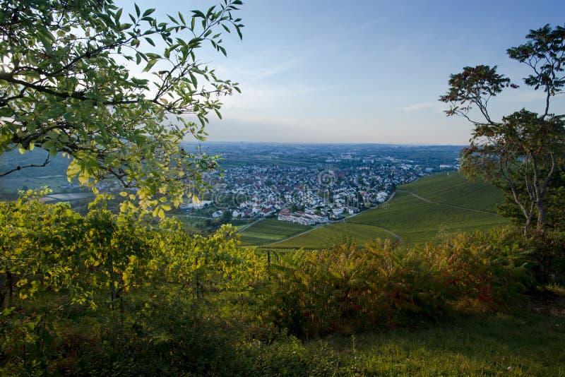 Sikt från en vingård på byn Beutelsbach fotografering för bildbyråer