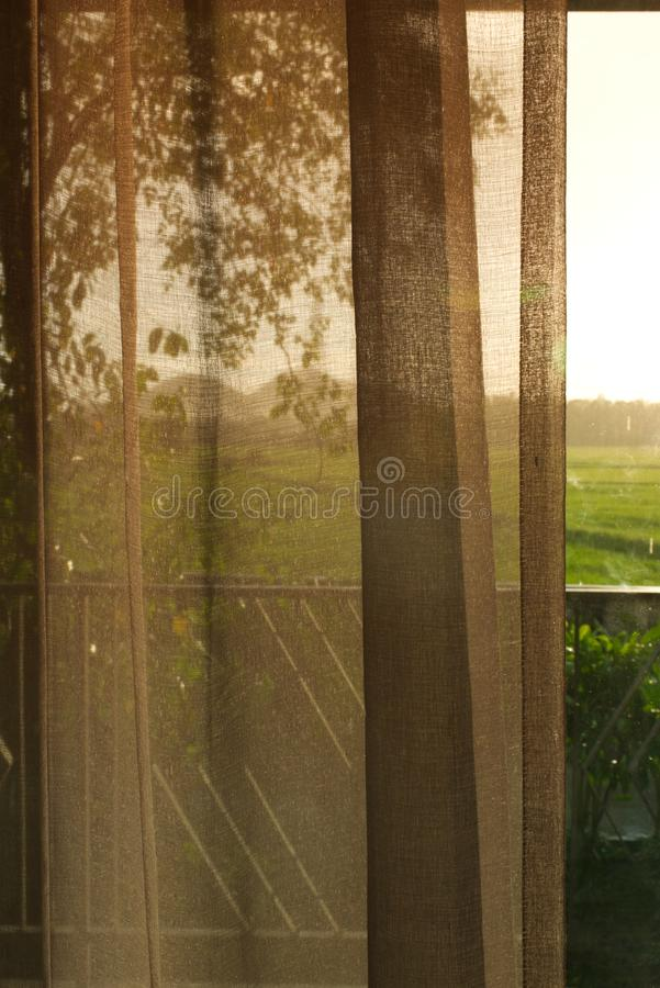 Sikt från ett rum som ser till risfältet royaltyfri bild