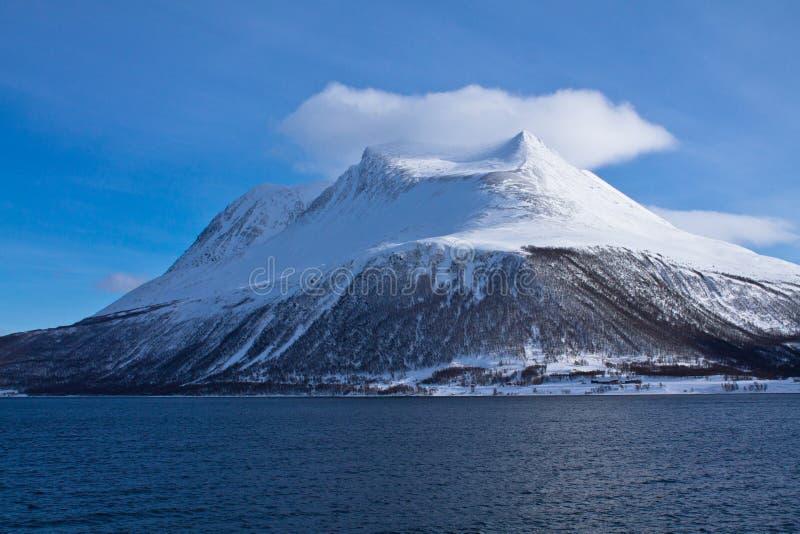 Sikt från fartygtur på den härliga snöig fjorden med ett moln på i det norska havet i blå himmel, Norge royaltyfria foton