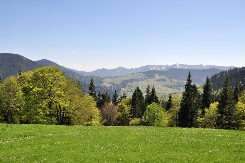 Sikt från maximumet berget royaltyfri foto