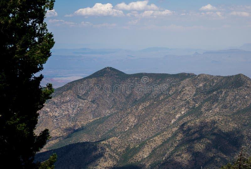 Sikt från monteringen Lemmon Tucson Arizona arkivfoto