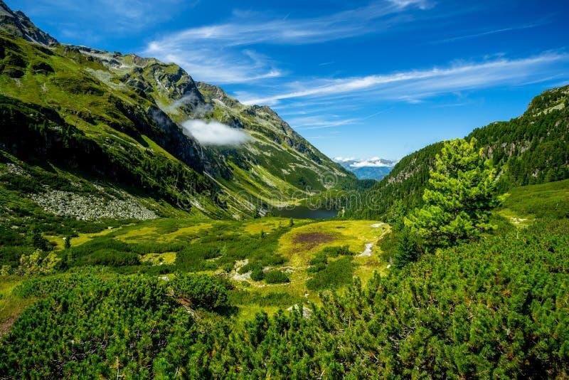 Sikt från Rocky Alpine Trail till nseen för sjöGrà ¼ fotografering för bildbyråer