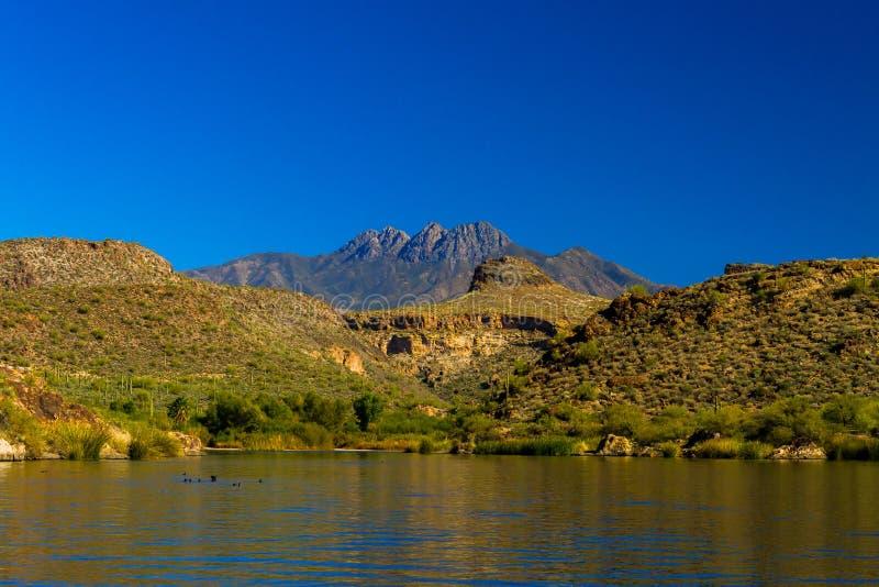Sikt från Saguaro sjön arkivbild