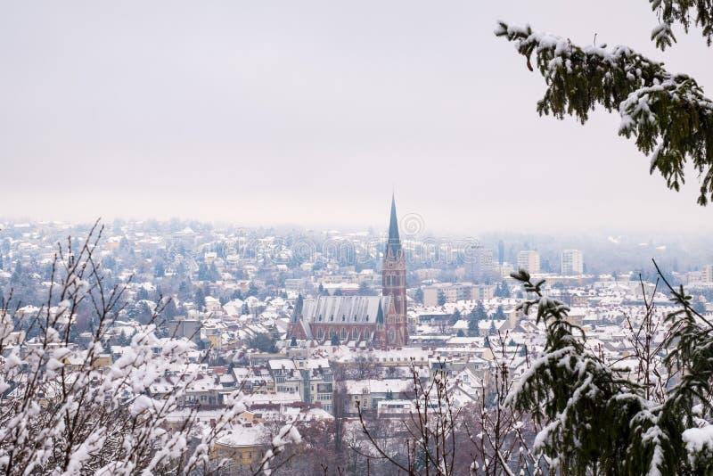 Sikt från Schlossberg i den Graz Herz-Jesu-kyrkan i vinter fotografering för bildbyråer