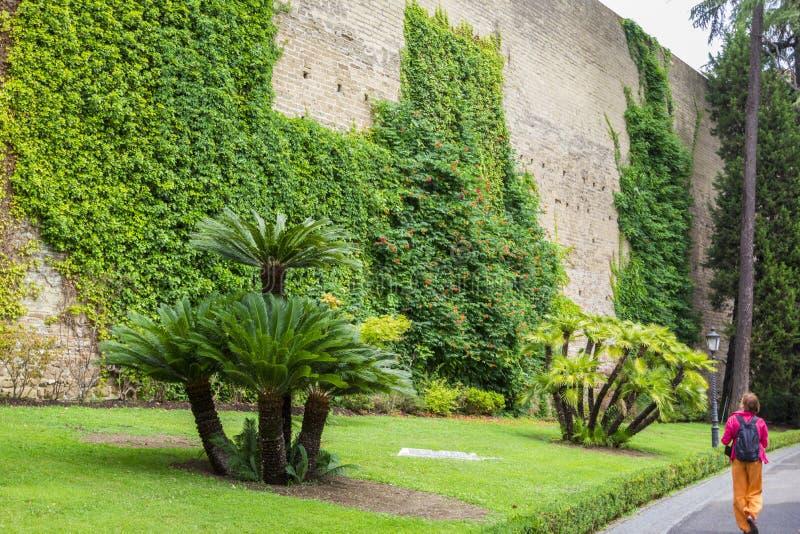 Sikt från Vaticanenträdgårdar till den höga stentegelstenväggen med grön vegetation, vinrankan, blommor, ljusa gräsmattor och pal royaltyfria bilder