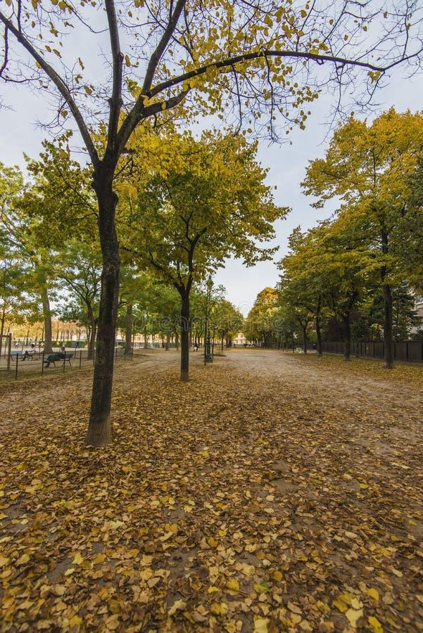Sikt i parkera av Paris i höst royaltyfri bild