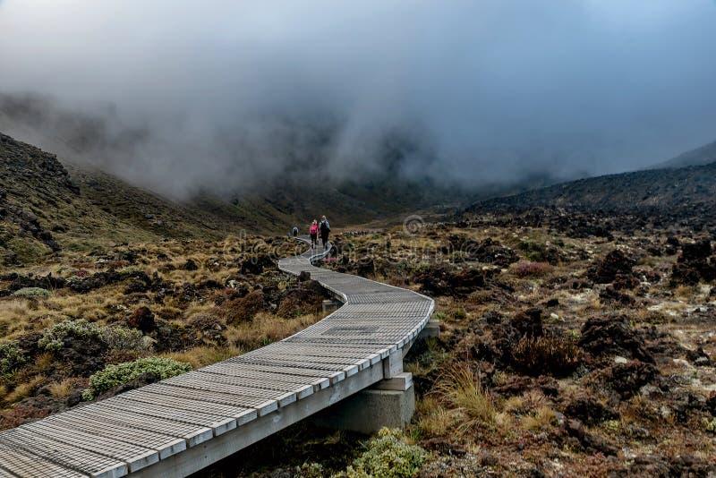 Sikt längs Tongariro den alpina slingakorsningen i Nya Zeeland royaltyfri fotografi