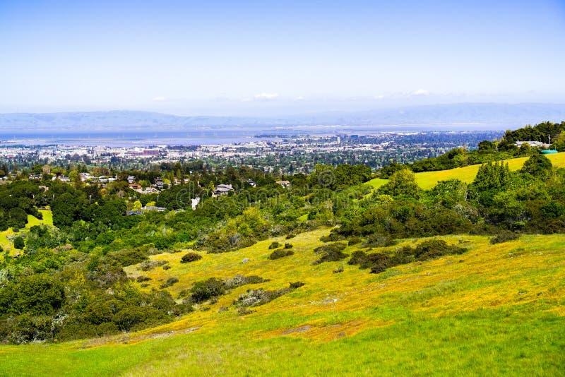 Sikt in mot Redwood City och Menlo Park; kullar och dalar som täckas i grönt gräs och vildblommor som är synliga i förgrunden, arkivfoton