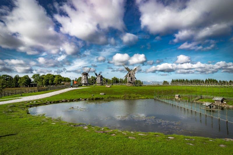 Sikt in mot samlingen av gamla väderkvarnar på den Angla väderkvarnkullen på en solig dag med blå himmel och moln i Saaremaa fotografering för bildbyråer
