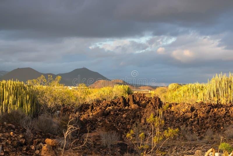 Sikt på de långväga bergen med det guld- solnedgångljuset, Tenerife, kanariefågelöar, Spanien - bild arkivfoton