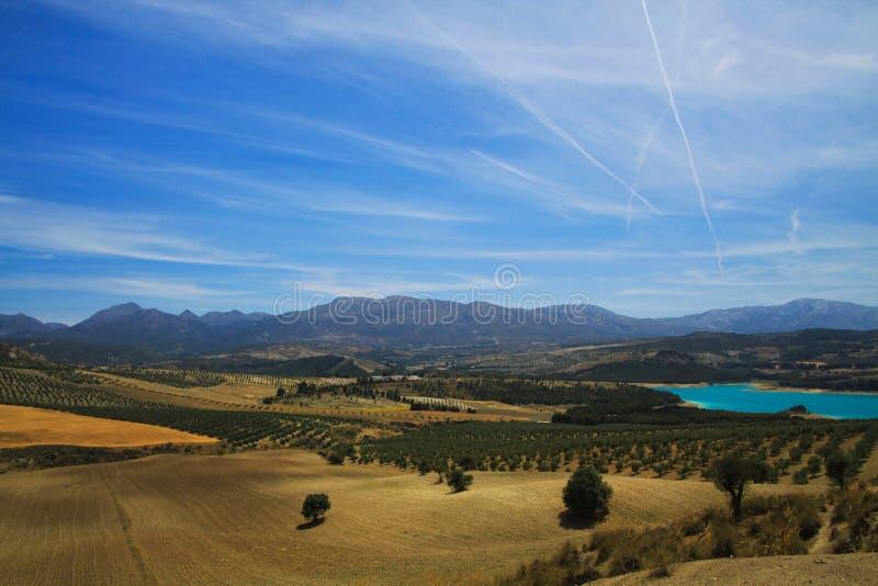Sikt på den lantliga dalen med olivgröna dungar, skördfält och den blåa konstgjorda sjön Bermejales med bergskedja i horisont arkivfoto