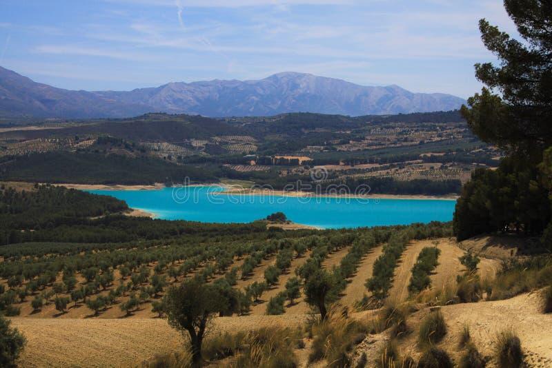Sikt på den lantliga dalen med olivgröna dungar, skördfält och den blåa konstgjorda sjön Bermejales med bergskedja i horisont fotografering för bildbyråer