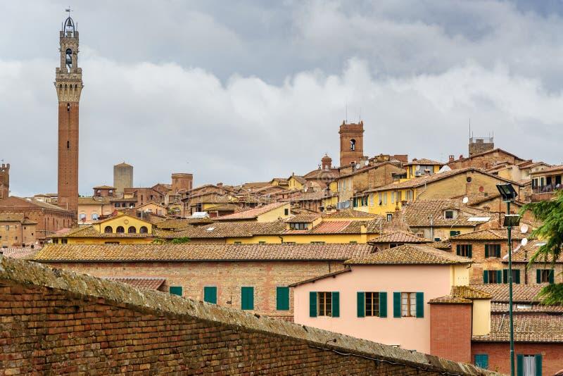 Sikt på den Siena staden från den basilikaMaria deien Servi italy arkivfoto