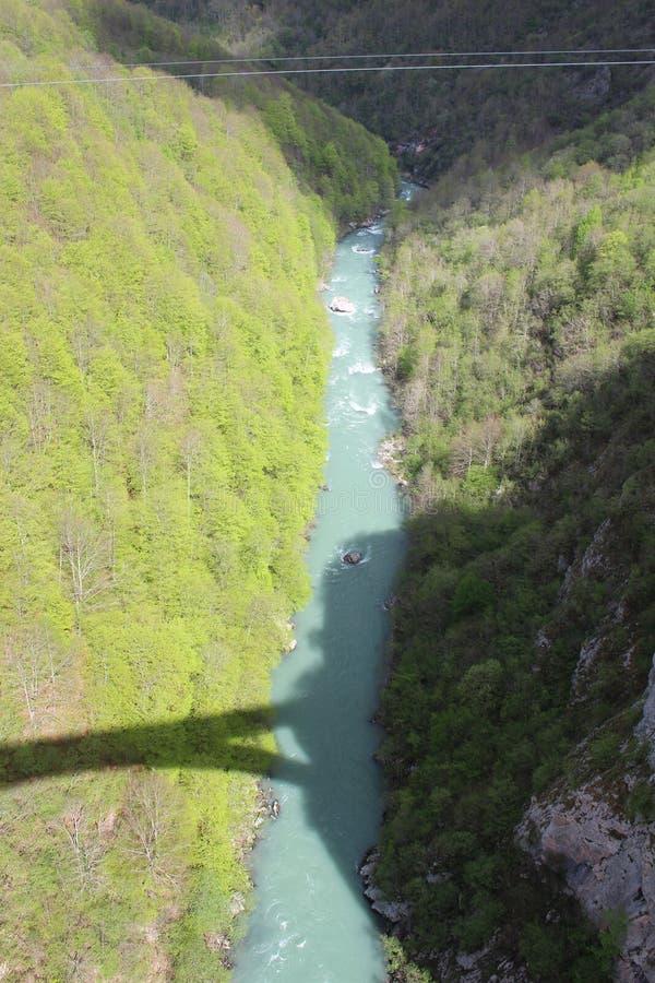 Sikt på den Tara floden från sikt ‡ a Tara Bridge, en för eviÄ på för Ä-urÄen 'av de mest härliga broarna i världen arkivbild