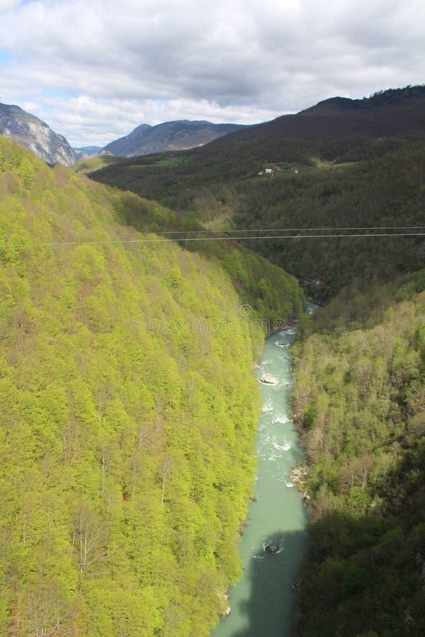 Sikt på den Tara floden från sikt ‡ a Tara Bridge, en för eviÄ på för Ä-urÄen 'av de mest härliga broarna i världen royaltyfria foton