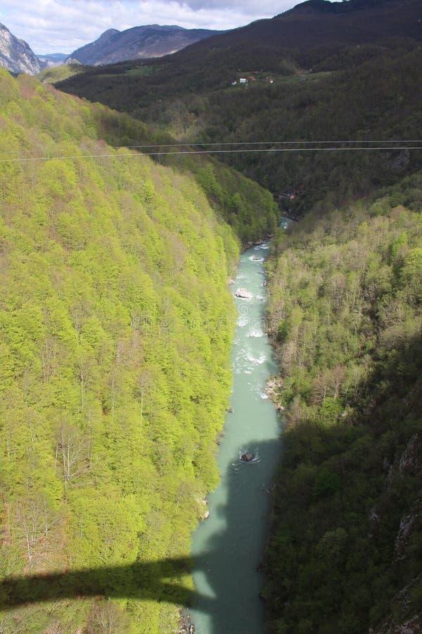 Sikt på den Tara floden från sikt ‡ a Tara Bridge, en för eviÄ på för Ä-urÄen 'av de mest härliga broarna i världen fotografering för bildbyråer