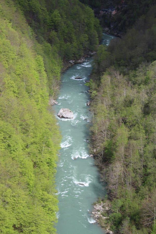 Sikt på den Tara floden från sikt ‡ a Tara Bridge, en för eviÄ på för Ä-urÄen 'av de mest härliga broarna i världen royaltyfri bild